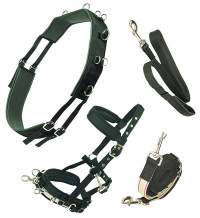 EQUI PRENE ANTI-GALL LUNGING KIT