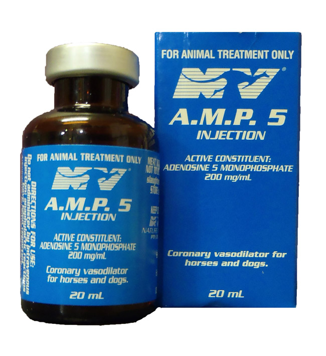 Amp 5 Injection 20ml
