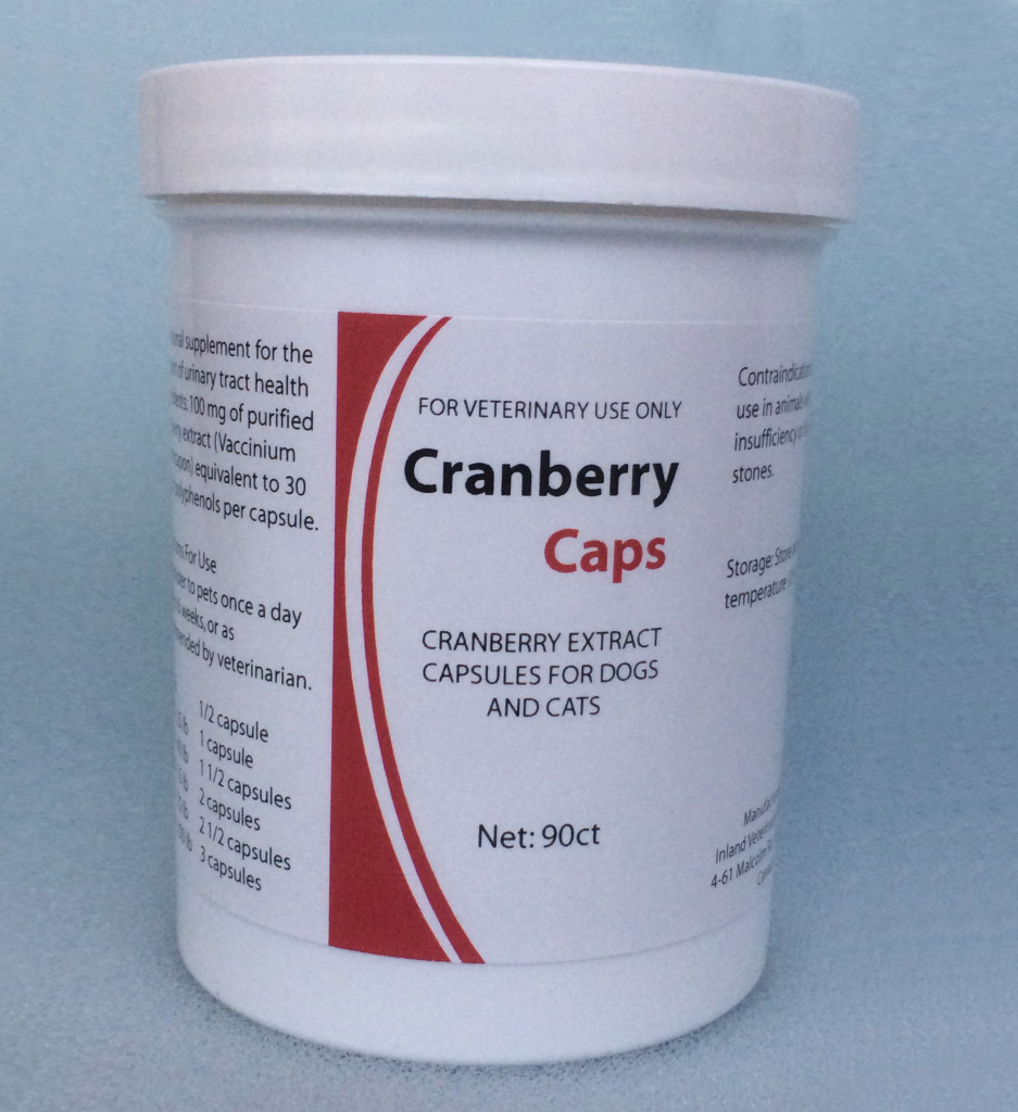 Cranberry Extract Capsules For Dogs And Cats